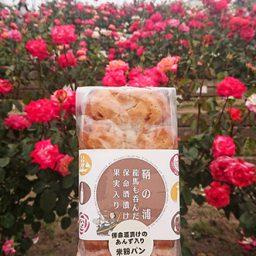 福山バラ祭り2019に参加してきました